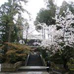 桜咲く鎌倉散歩 2016