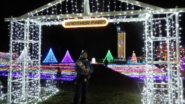 マザー牧場のイルミネーション 2020.11.3